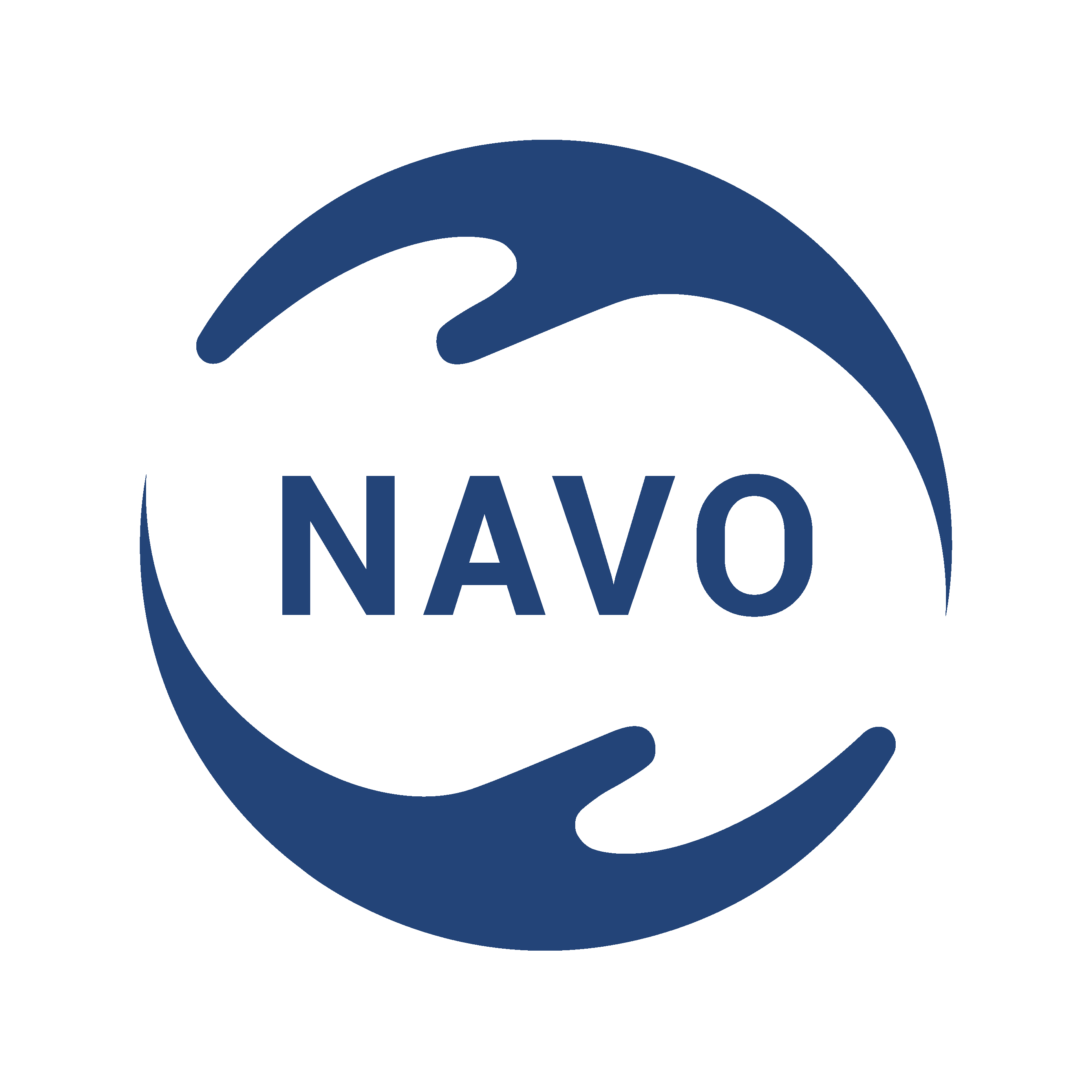 200331_Logo_NAVO_ohne claim_rgb_#tranparent_RZ